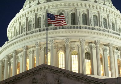 The Rise of the Vietnamese American Political Consciousness Advocacy on Capitol Hill